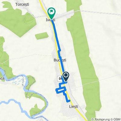 Route to DJ254, Iveşti