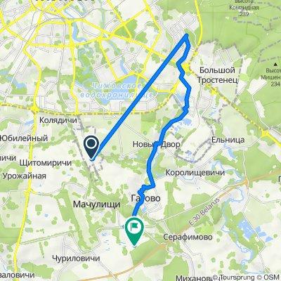 От Babushkina 27A, Минск до Н9062, Цесино