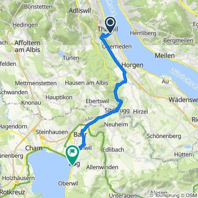Alte Landstrasse 87, Thalwil nach Fischmarkt 10, Zug