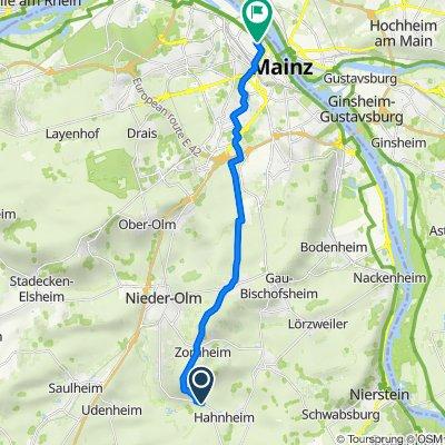Wahlheimer Straße, Hahnheim nach Feldbergstraße 19, Mainz