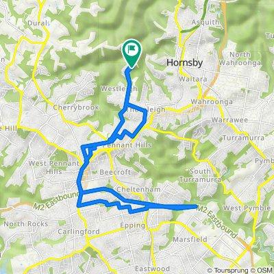 Westleigh to Marsfield loop