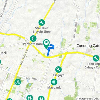 Jalan Pandega Asih IV d24, Kecamatan Depok to Jalan Cokelat 3, Kecamatan Depok
