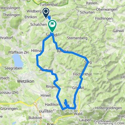 Swisstopo Route