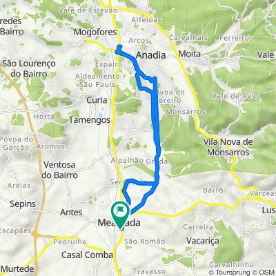 Route from Rua Armindo Pêga 17, Mealhada