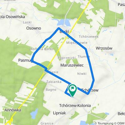 17,27km