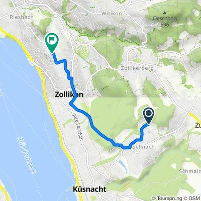 Rietstrasse 25, Küsnacht ZH nach Bleulerstrasse 52, Zürich