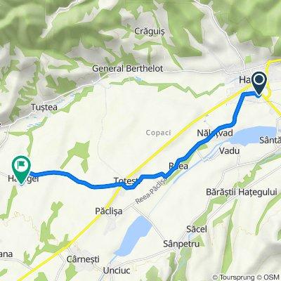 Route from Strada Carpați 2, Haţeg