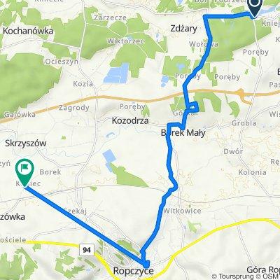 Kamionka 4A, Czarna koło Ropczyc do Brzezówka 54B, Lubzina