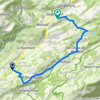 Le Creux des Biches, Le Noirmont nach Chemin des Sports 10, Saignelégier