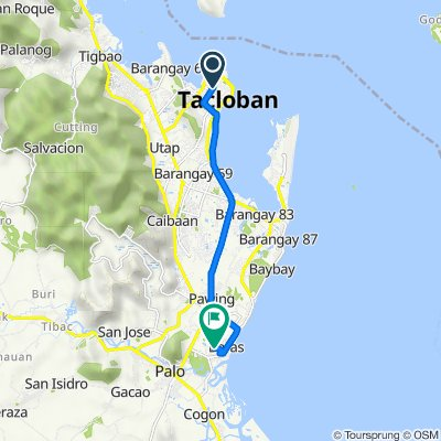 M.H. Del Pilar Street 92, Tacloban City to Unnamed Road, Palo