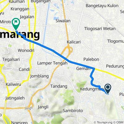 Kedungmundu, Kecamatan Tembalang to Jalan Anggrek Raya 19, Kecamatan Semarang Tengah