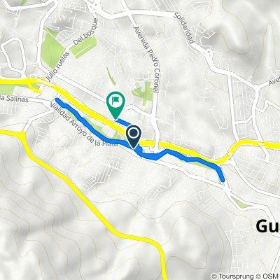 De Calle Sicómoro, Guadalupe a Calle Gavilanes 2, Guadalupe