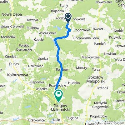 Cisów-Las do Wygoda 9, Głogów Małopolski