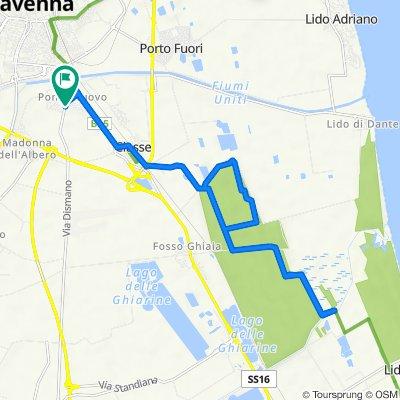 Da Via Dismano 92, Ravenna a Via Dismano 92, Ravenna