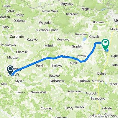 Różana 14, Bieżuń do Stare Kosiny, Wiśniewo