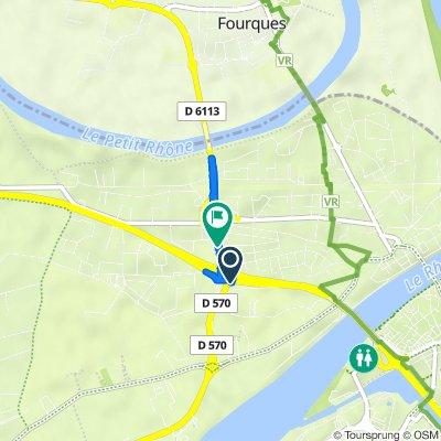 Route des Saintes Maries, Arles nach D113, Arles