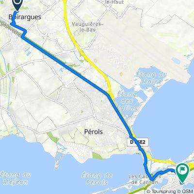 De Avenue du Grenache 56, Lattes à Avenue Grassion Cibrand 123, Mauguio