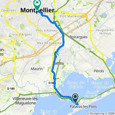 Palavas-les-Flots naar Lounis Dexter, Montpellier
