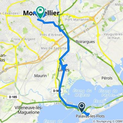 Palavas-les-Flots naar Grand Rue Jean Moulin 59, Montpellier