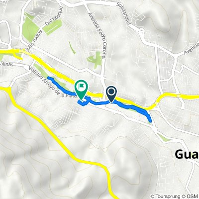 De Paseo García Salinas 19, Guadalupe a Calle Palmares 209, Guadalupe