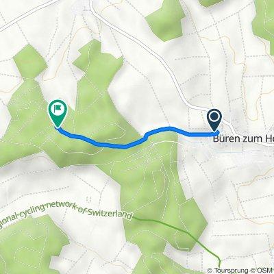 Guetacher 7, Büren zum Hof nach Holz, Mülchi