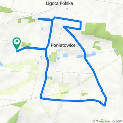 Poniatowice 169h, Oleśnica Śląska do Poniatowice 169h, Oleśnica Śląska