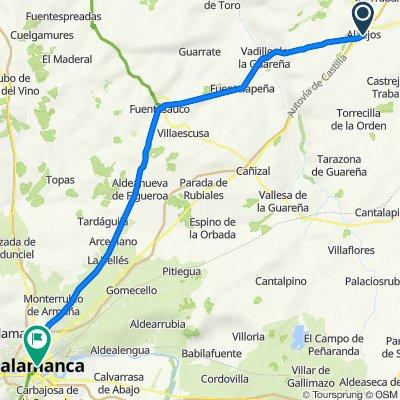 Alaejos to Salamanca