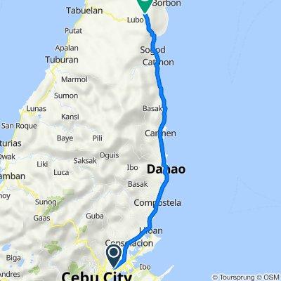 Mount Manunggal Street 1416, Mandaue City to Central Nautical Highway, Borbon