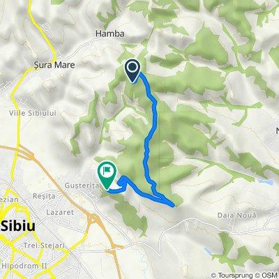 Sibiu to Strada Bradului, Sibiu