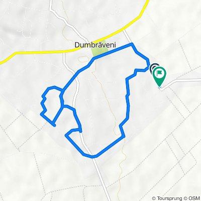 DC65, Dumbraveni to DC65, Dumbraveni