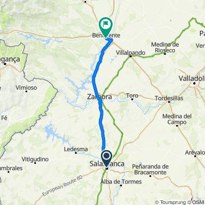 Vía de la Plata 6: Salamanca - Benavente