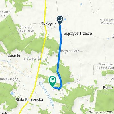 Trasa z Siąszyce Trzecie 44, Rychwał