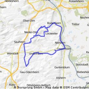 Oppenheim Dexheim Bechtolsheim