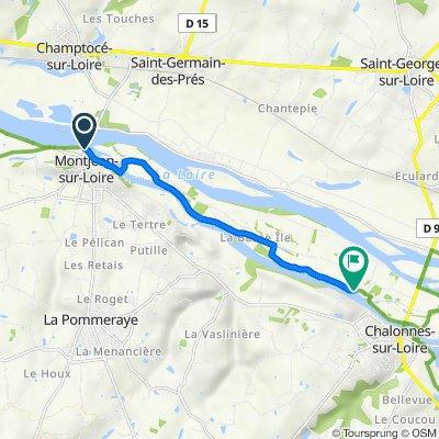 De 1 Quai des Mariniers, Montjean-sur-Loire à La Motte, Chalonnes-sur-Loire