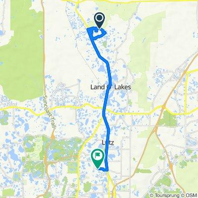 Connerton Blvd, Land O Lakes to 824 Crenshaw Lake Rd, Lutz