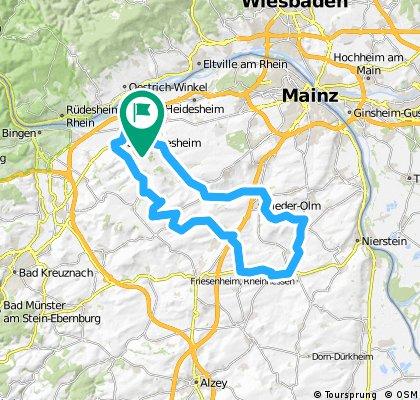 044c: Ingelheim - Partenheim - Undenheim - Mommenheim - Nieder-Olm - Ingelheim