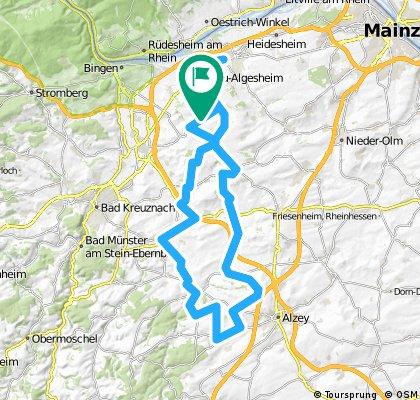 045a: Ingelheim - Flonheim - Weinheim - Nack - Wöllstein - Col de Deponie - Ingelheim