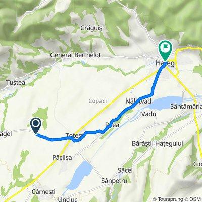 Route to Strada Unirii 5, Haţeg