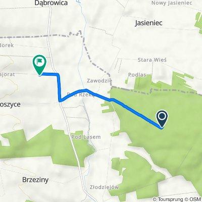 Trasa do Małoszyce 95a–96, Żarnowiec