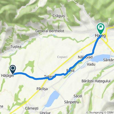 Route to Strada Munților Retezat, Haţeg