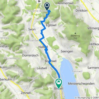 Trasa do Dorf, Birrwil