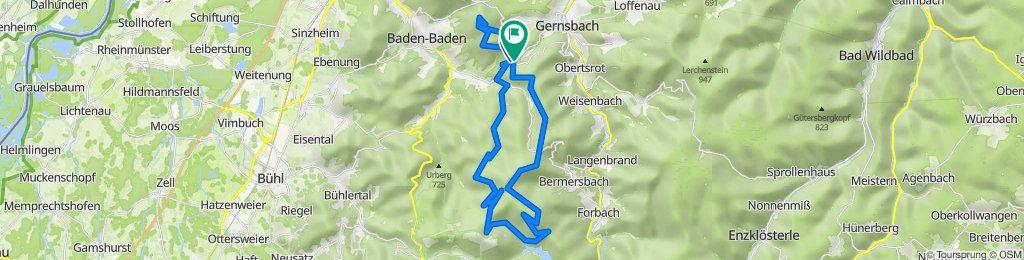 Badener Höhe_Merkur