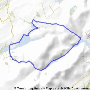 Pentland four-reservoir circuit