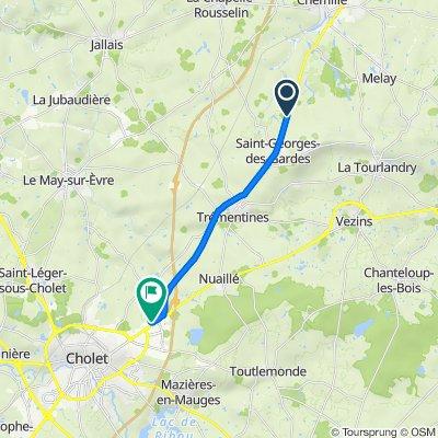 De D160, Saint-Georges-des-Gardes à 45 Avenue d'Angers, Cholet