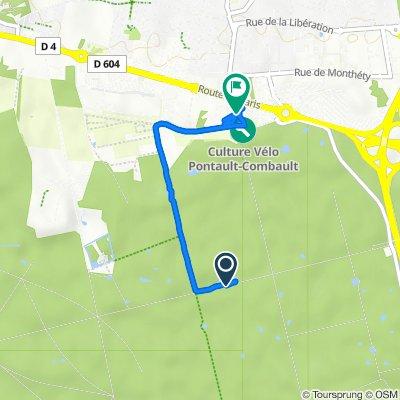 De Route Royale, La Queue-en-Brie à Le Pavé de Pontault, Pontault-Combault