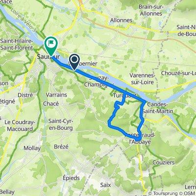 Route de Montsoreau 44, Saumur to Quai Mayaud 71, Saumur