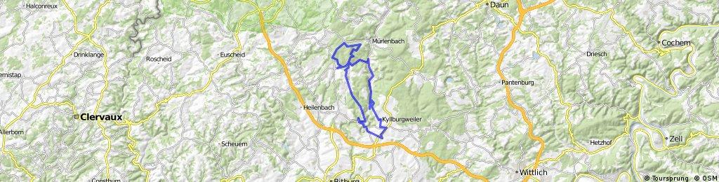 Kyllburger Waldeifel (Nur zu Besuch)