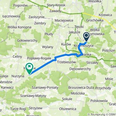 46A, Krzymoszyce do Droga Wojewódzka 806 65