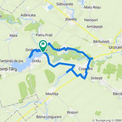 Dridu MTB 37 km Dridu - Cosereni - Moldoveni - L. Dridu - Dridu-Snagov - Dridu