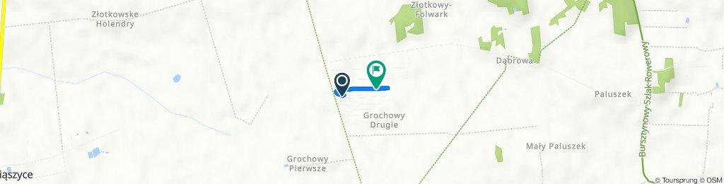 Trasa z Grochowy 74A, Rychwał